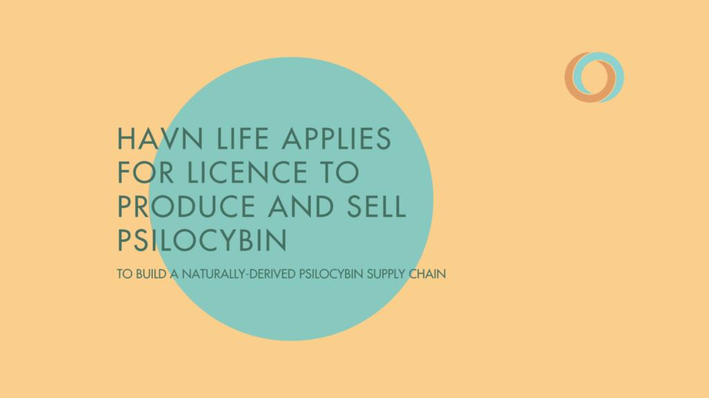 Havn Life psilocybin application